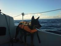 Oxnard to Oceanside